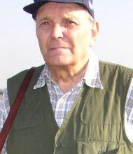 Gino Bergami